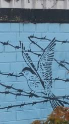 Murals, Belfast
